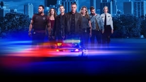 Chicago P.D. (2014), serial online subtitrat