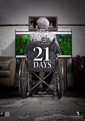 21 день (2014)
