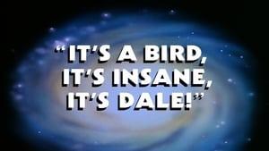 It's a Bird, It's Insane, It's Dale!