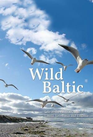 Wild Baltic