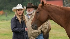 Heartland Season 8 :Episode 10  The Heart of a River