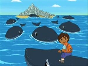 Go, Diego, Go!: Season 1 Episode 4