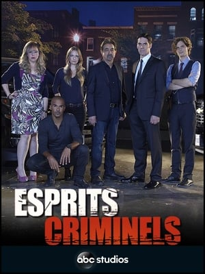 Play Esprits criminels