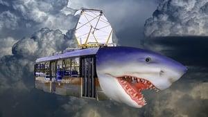 Tashkent tram-shark attack