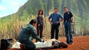 Hawai 5.0 - Temporada 3
