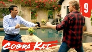 Watch Cobra Kai: Season 1 Episode 9