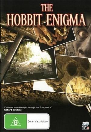 The Hobbit Enigma (2008)