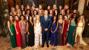 The Bachelor, Season 15 picture