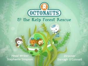 The Octonauts Season 1 Episode 24