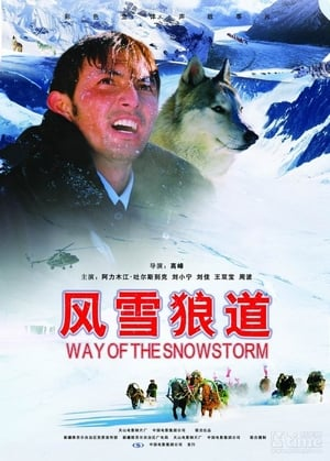 Way of the Snowstorm