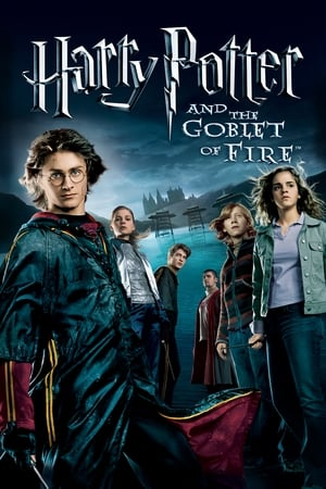 Poster Harry Potter and the Goblet of Fire (2005)