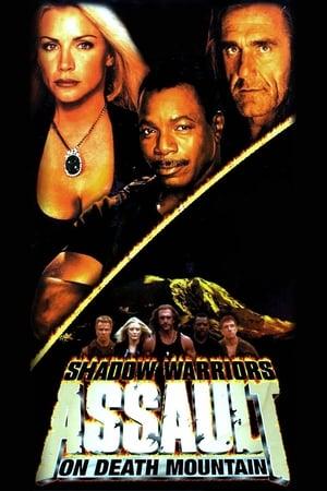 Les Guerriers de l'ombre 2 (1999)