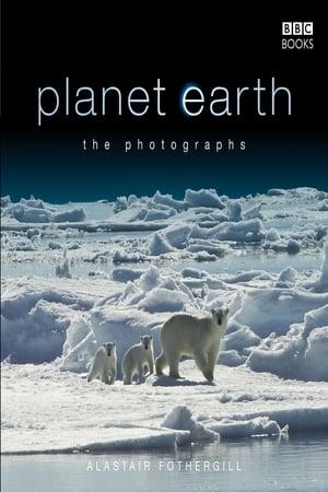 Image BBC Planet Earth A Celebration