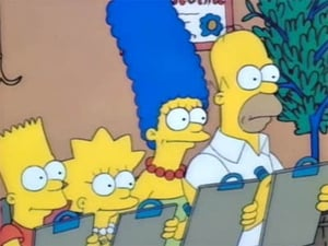The Simpsons Season 1 : There's No Disgrace Like Home