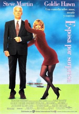 VER Esposa por sorpresa (1992) Online Gratis HD