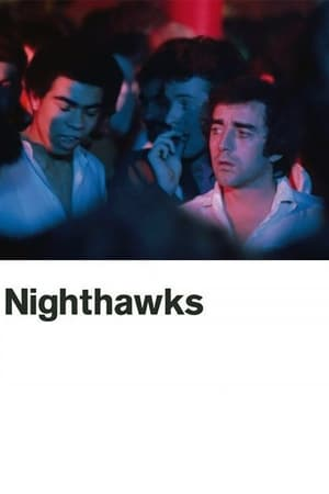 Nighthawks-Azwaad Movie Database