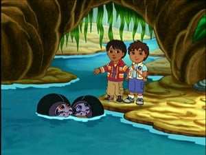 Go, Diego, Go!: Season 3 Episode 12
