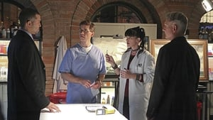 NCIS Season 12 : Episode 17