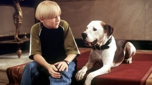 The Pooch and the Pauper (2000)