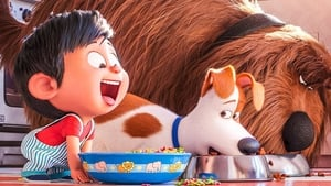 Pets 2 – Vita da animali 2019 Altadefinizione Streaming Italiano