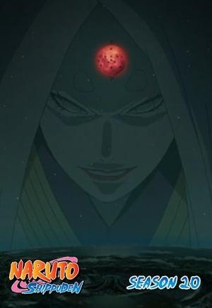 Naruto Shippūden: 20×491