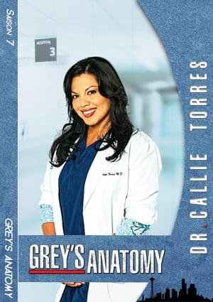 Grey's Anatomy Saison 8 Épisode 23