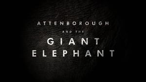 English movie from 2017: Attenborough and the Giant Elephant