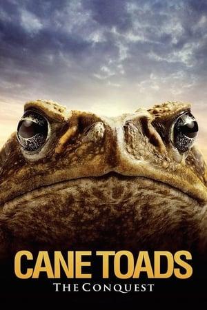 Cane Toads: The Conquest