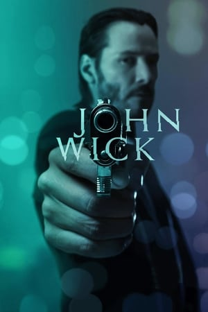 John Wick (2014) is one of the best movies like No Country For Old Men (2007)