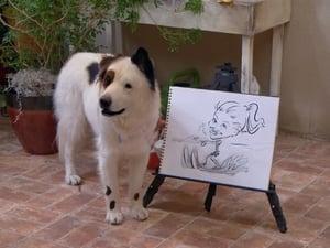 Dog with a Blog: Season 2 Episode 15