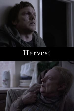Harvest-Michael Socha