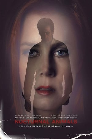 Nocturnal Animals BDRIP TRUEFRENCH