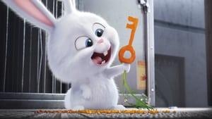 Mascotas (2016) HD 1080p Latino