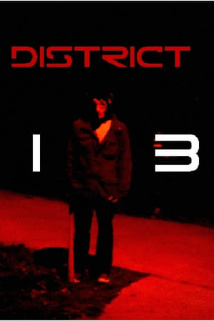 Play District 13