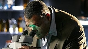 CSI: Crime Scene Investigation: 9×11