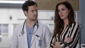 Assistir Grey's Anatomy 15ª Temporada Episódio 16 Online Dublado – Legendado
