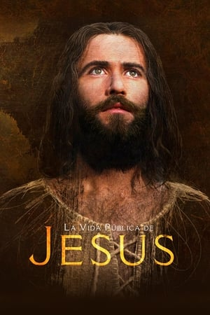 Jesús (La vida pública de Jesús)