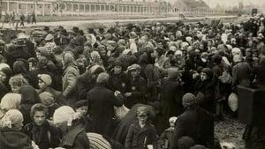 Ein Tag in Auschwitz (2020)