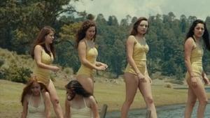 Ver Mientras el lobo no esta (2017) Online Pelicula Completa Latino Español en HD