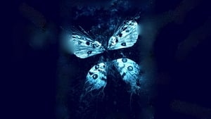 El efecto mariposa 3 (The Butterfly Effect 3: Revelations)