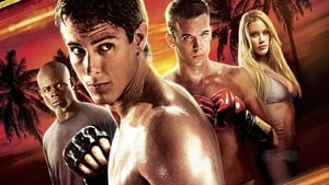 Never Back Down 2008