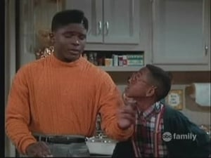 Family Matters 1×19