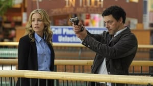 Covert Affairs: 3×8