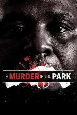 Poster A Murder in the Park (2015)