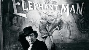 The Elephant Man (1980) Full Movie, Watch Free Online And Download HD