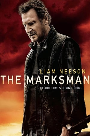 The Marksman (El protector) (2021)