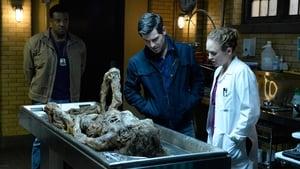 Grimm Season 6 Episode 5 Watch Online Free