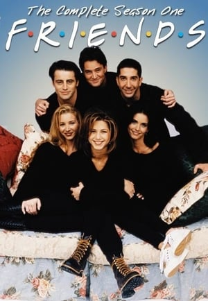 Friends (1994) Season 1 Complete in One Video
