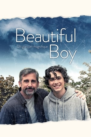 Film My beautiful boy  (Beautiful Boy) streaming VF gratuit complet