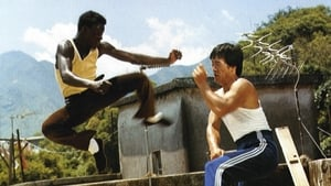Soul Brothers of Kung Fu (1977)